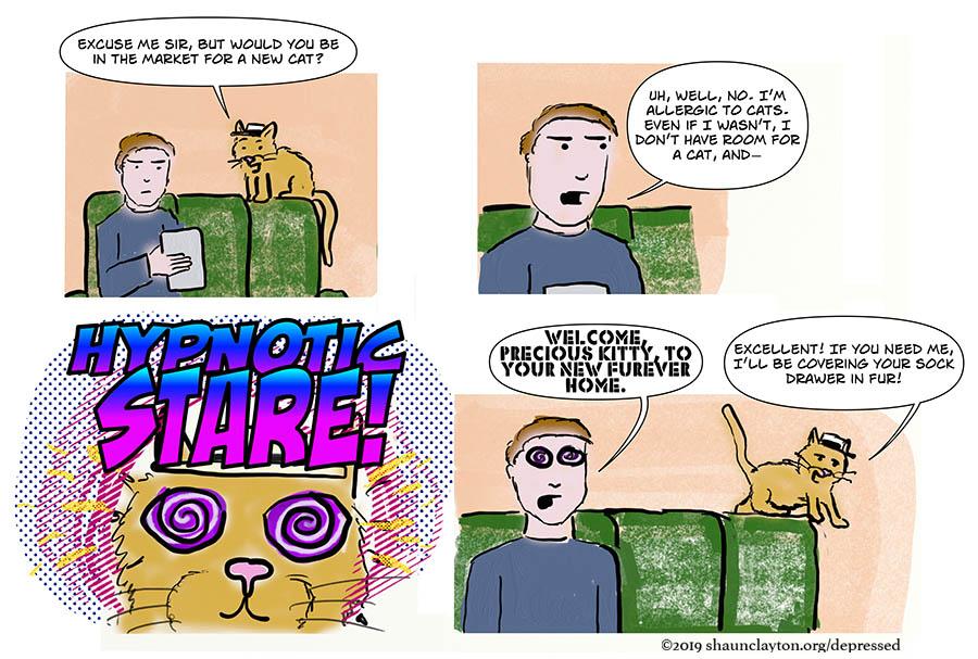 Cat of a Salesman