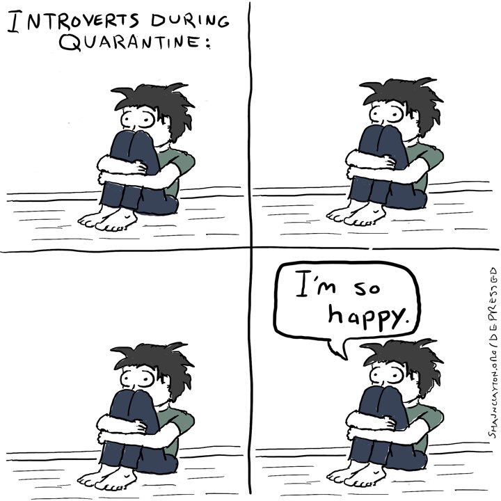 Introverts During Quarantine