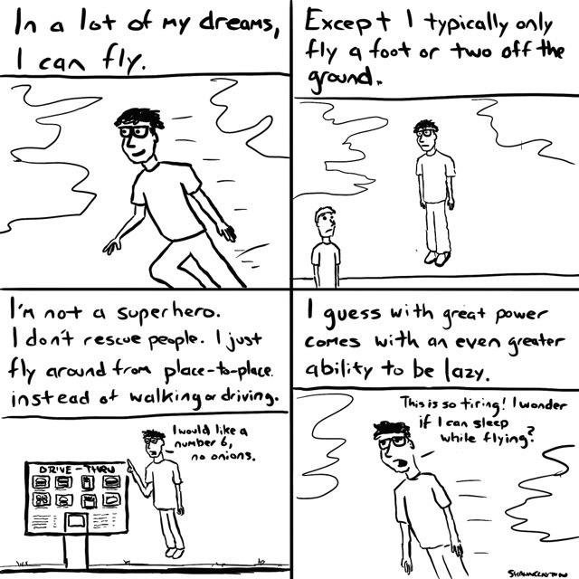 Flying While Sleeping
